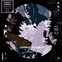 DERMOT KENNEDY - WITHOUT FEAR (PICTURE DISC LP)