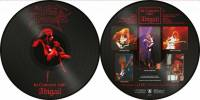 KING DIAMOND - IN CONCERT 1987: ABIGAIL (PICTURE DISC LP)